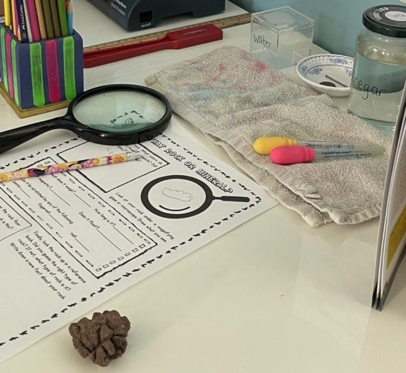 Mini Geology Unit